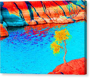 Single Tree In Red Yellow And Blue Canvas Print