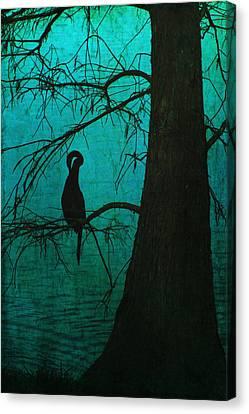 Singular Anhinga  Canvas Print