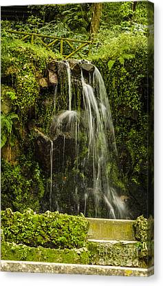 Sintra Waterfall Canvas Print by Deborah Smolinske