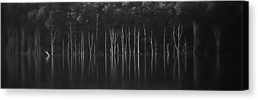 Sirens Hiding Canvas Print by Steven Huszar
