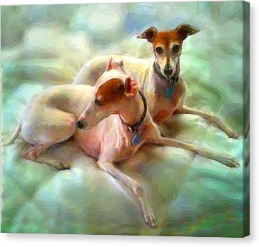 Greyhound Canvas Print - Sisters by Tammy Berk