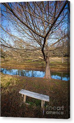 Sit And Dream Canvas Print