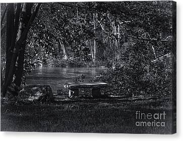 Canvas Print featuring the photograph Sit And Ponder by Mark Myhaver