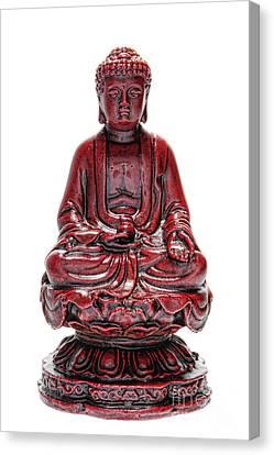 Sitting Buddha  Canvas Print by Olivier Le Queinec