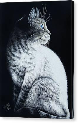 Feline Canvas Print - Sitting Cat by Monique Morin Matson
