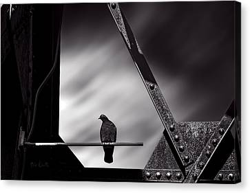 Sitting On A Stick Canvas Print by Bob Orsillo