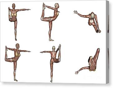 Six Different Views Of Dancer Yoga Pose Canvas Print