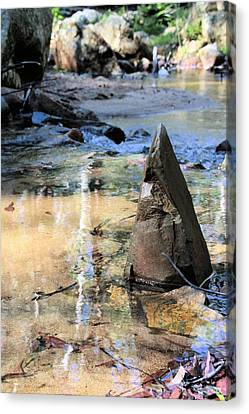 Six Mile Creek Canvas Print by David Rich