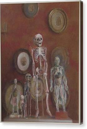 Skeleton Cabinet Canvas Print