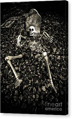 Skeleton Rising From The Dead Canvas Print by Amy Cicconi