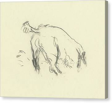 Sketch Of A Dog Digging A Hole Canvas Print