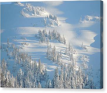 Canvas Print featuring the photograph Ski by Karen Horn