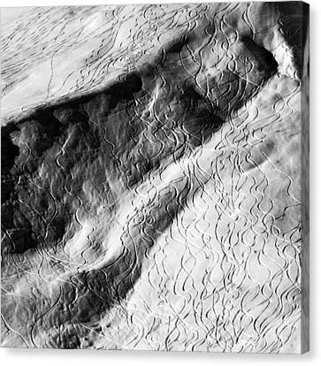 Ski Traces Canvas Print