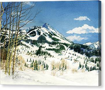 Skiers Paradise Canvas Print by Barbara Jewell