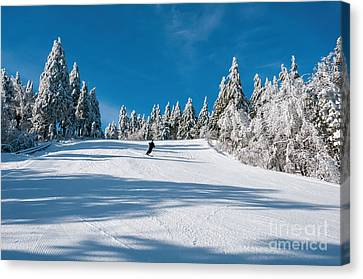 Skiers Paradise Canvas Print by Sharon Seaward