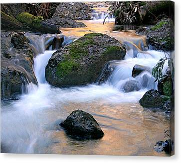 Skokomish River Canvas Print by John Bushnell