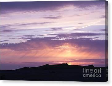 Skomer Sunset Canvas Print by Anne Gilbert