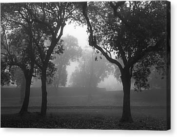 Skc 0063 Atmospheric Bliss Canvas Print by Sunil Kapadia