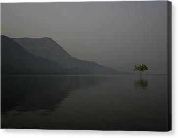 Skc 0086 Solitary Isolation Canvas Print by Sunil Kapadia