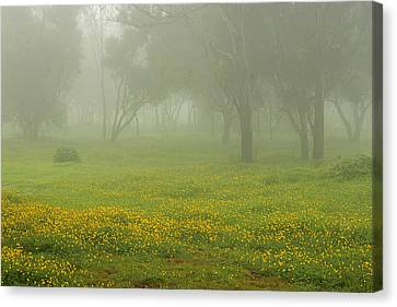 Skc 0835 Romance In The Meadows Canvas Print by Sunil Kapadia