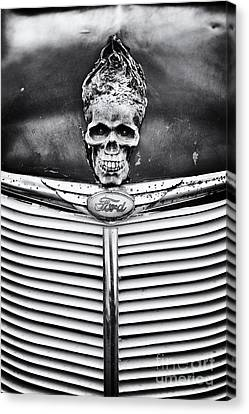 Skull And Bones Canvas Print by Tim Gainey