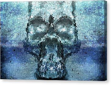 Skull In The Mirror Canvas Print