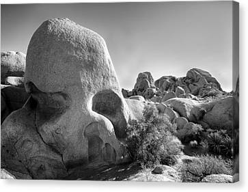 Skull Rock Canvas Print by Peter Tellone