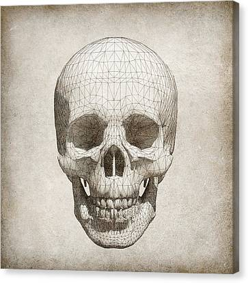 Skull Wireframe On Paper.  Canvas Print by Thanes
