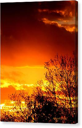 Sky Ablaze Canvas Print by Russell  King