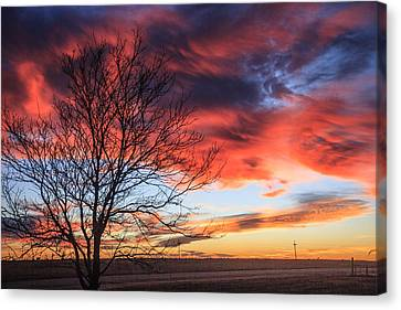 Sky Ablaze Canvas Print by Shirley Heier