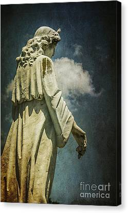 Sky Angel Canvas Print by Terry Rowe