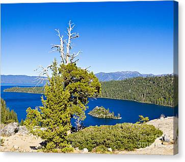 Sky Blue Water - Emerald Bay - Lake Tahoe Canvas Print