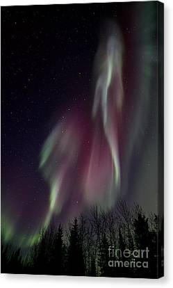 Glowing Canvas Print - Sky Dancer by Priska Wettstein
