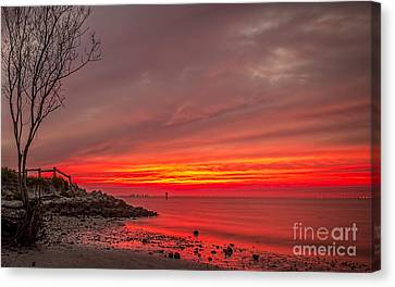 Sky Fire Canvas Print by Marvin Spates