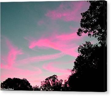 Sky Glow Canvas Print by Aeabia A