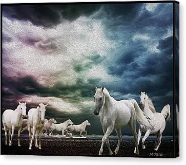 Sky Horses Canvas Print