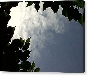 Sky Is The Limit Canvas Print