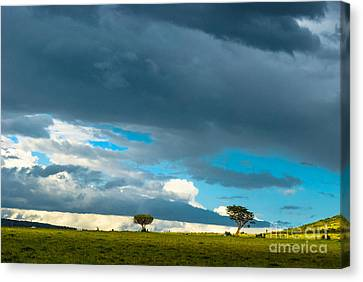 Sky Is The Limit Canvas Print by Syed Aqueel