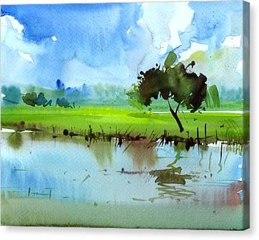 Sky N Farmland Canvas Print by Anil Nene