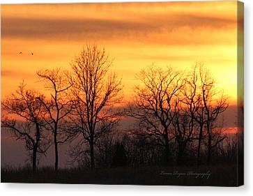 Sky On Fire Canvas Print by Lorna Rogers Photography