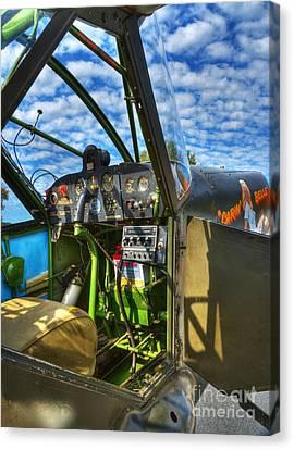 Sky Pilot Canvas Print by Mel Steinhauer