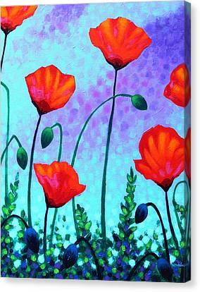 Sky Poppies Canvas Print by John  Nolan