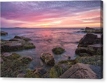 Sky Purple Canvas Print by Jon Glaser
