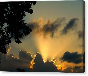 Sky Show Canvas Print by Sherry Dooley