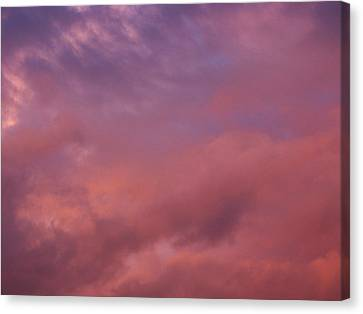Canvas Print featuring the photograph Sky Song by Laurie Stewart