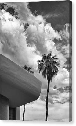 Sky-ward Palm Springs Canvas Print by William Dey