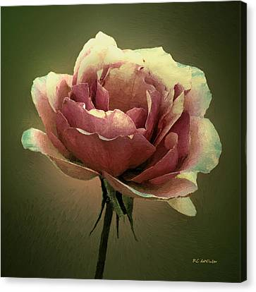 Skyblue Pink Canvas Print by RC deWinter