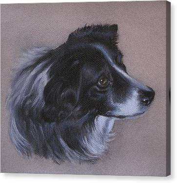 Canvas Print featuring the painting Skye by Patricia Schneider Mitchell