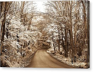 Skyland Road Canvas Print
