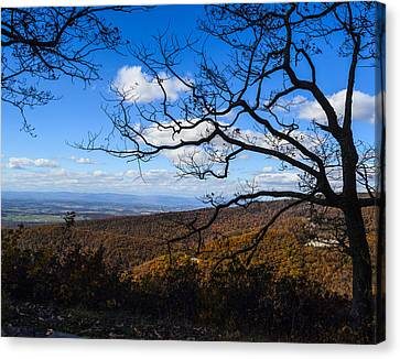 Skyline Dr. Canvas Print